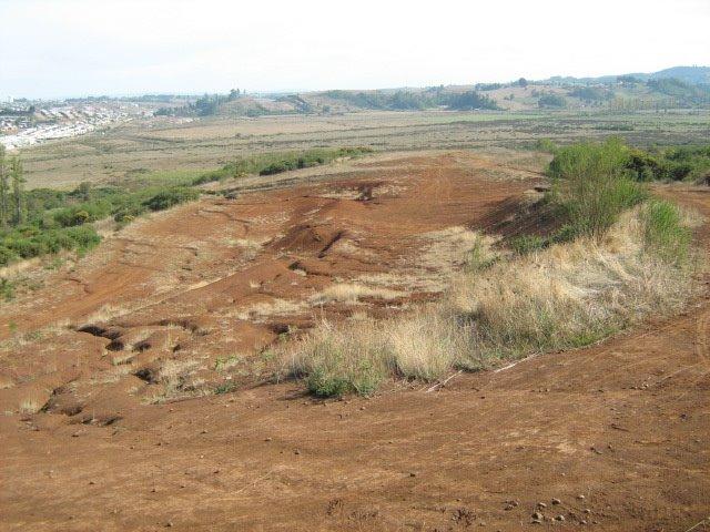 Uno de los accesos al cerro Ñielol