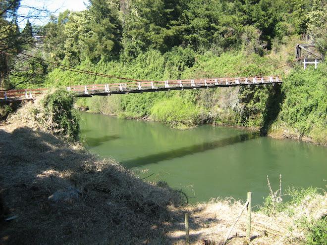 Puente Makehue Pelales