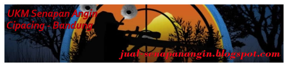 AIR RIFLE - AIR GUN - SENAPAN ANGIN