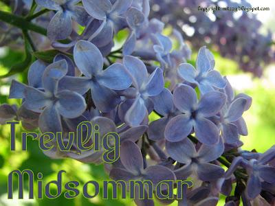Trevlig Midsommar, bild på lila syrenblommor.