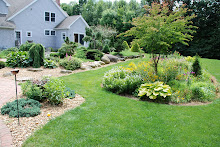 The Cutting and Dwarf Evergreen Gardens