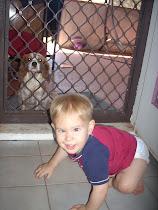 Wombat (Age 2)