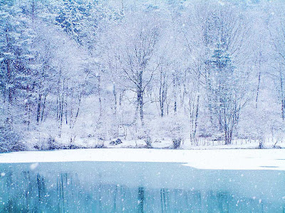 Free Winter Desktop Wallpaper Download - 1