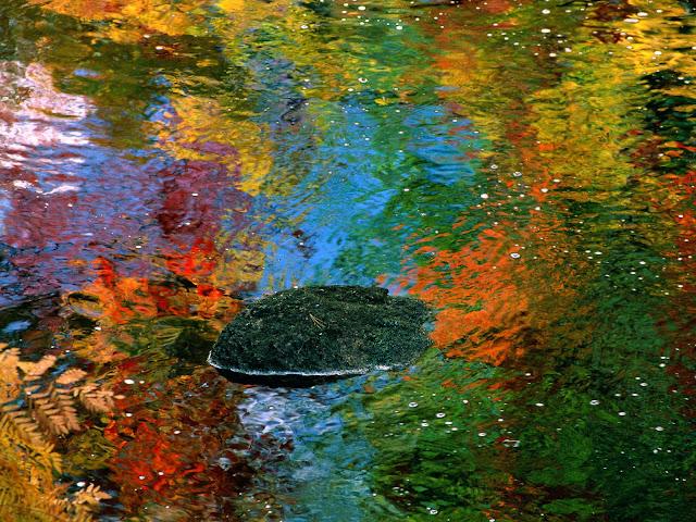 Herfstkleuren weerspiegelen in het water