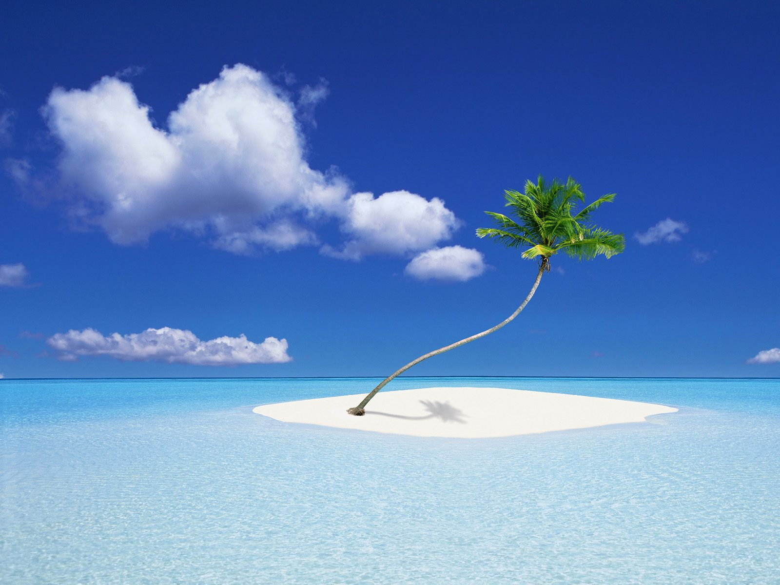 Summer HD Backgrounds | HD Wallpapers ,Backgrounds ,Photos ...