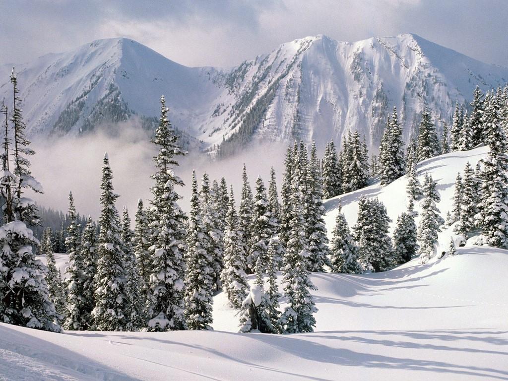 http://1.bp.blogspot.com/_RAlP3BmEW1Q/TQX6GfNTpyI/AAAAAAAACQw/NMBePd6SKiQ/s1600/The-best-top-winter-desktop-wallpapers-25.jpg