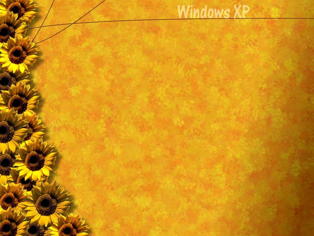 http://1.bp.blogspot.com/_RAlP3BmEW1Q/TQYTE1tkfLI/AAAAAAAACeU/S5irl6lwUUI/s1600/The-best-top-desktop-windows-xp-wallpapers-12.jpg