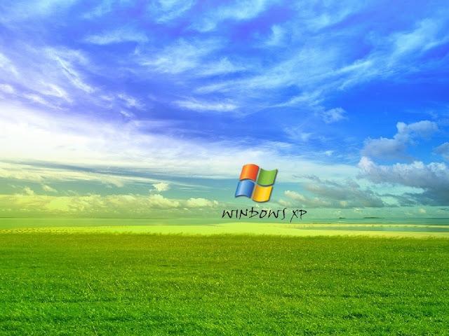 Windows XP Meadow Wallpaper Green Grass Blue Sky