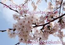 6º Tejijuntas: Kokeshi