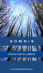 """Cartel Exposición """"Somnis"""""""