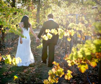 California Vineyard Wedding Photography