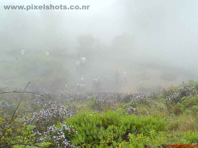 mist in munnar,photograph of men walking through mountain road in munnar rajamala kerala