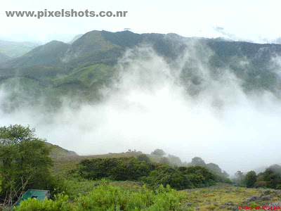 munnar-misty-hills,munnar-photos,photos from munnar rajamala,beautiful scenery from munnar kerala showing dense mist raising up between the hills from the valley