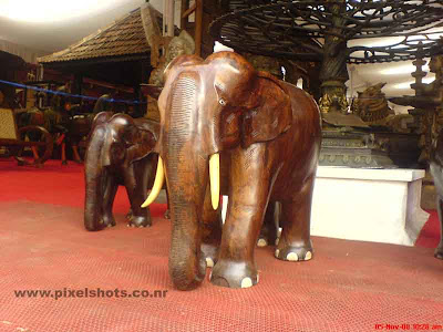 elephants timber sculpture closeup photograph from an antiques shop in india kerala cochin jew street