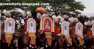elephant,kerala-elephants,Shiva-kshetra-ulsavam,ana,ezhunalleth,pooram,temple-elephants-festival,elephants-in-kerala-festival,cultural-festivals-of-kerala,Hindu-Lord-Shiva,venchamarom,alavattom