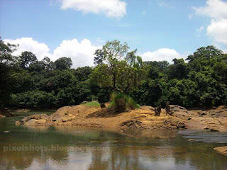beautiful river photos,scenic snaps of mountain river with small water stream.river delta formed of sands and rocks with a tree