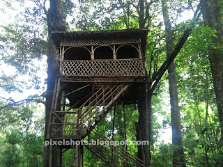 thenmala eco tourism,tree house in deer park of thenmala-kollam-kerala-india,kerala travel trip photos