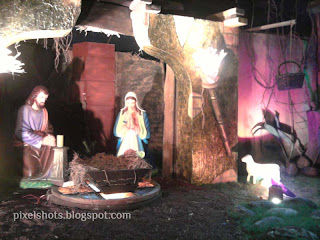 Xmas Cribs from churches of kerala cochin