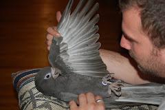 Zen Birdie