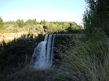 salto del itata
