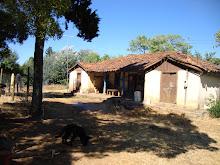 Asi era la casa de Monica vargas antes del terremoto