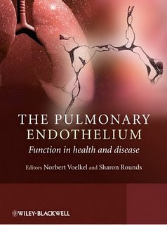 The Pulmonary Endothelium Function in health and disease