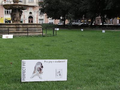 Reklama na psí žrádlo