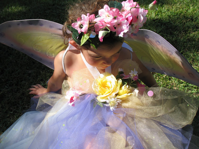 My Beautiful Fairy