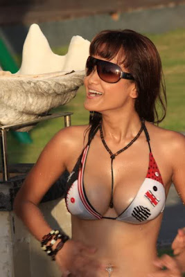Julia Perez, indonesia bikini, foto artis indonesia, Artis Indonesia,