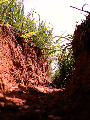 trench red clay dirt road