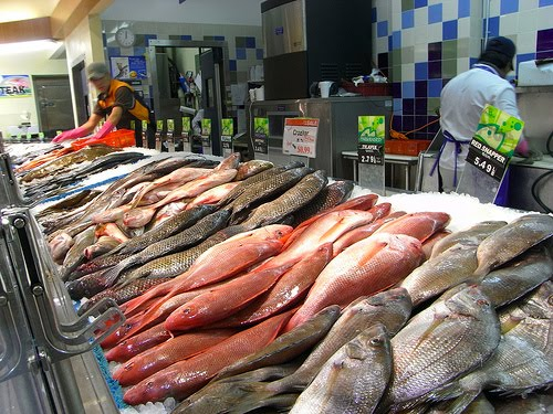 Local review h mart stores frugal philly mom blog for Fish market philadelphia