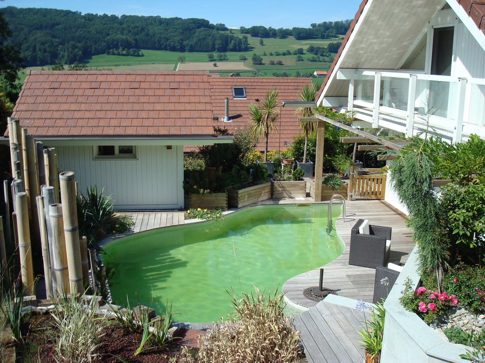 Paysagiste et am nagement de jardin thonon et annemasse for Prix amenagement jardin 100m2