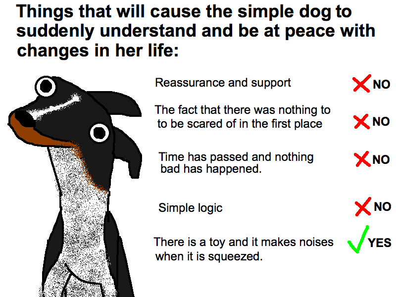 the funniest dog blog in the world ever saint laikas
