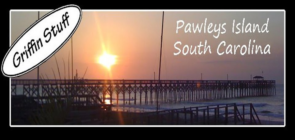 Pawleys Island Vacation