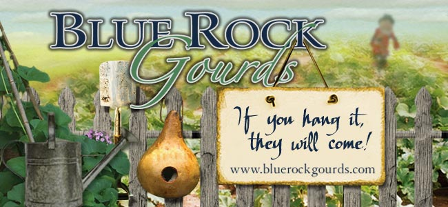 BLUE ROCK GOURDS