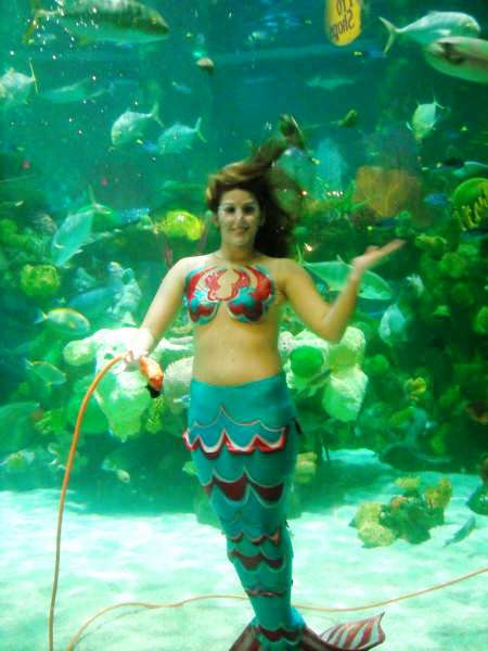 live casino online mermaid spiele