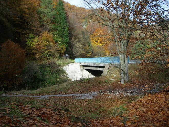 мостът преди селото на 5км.