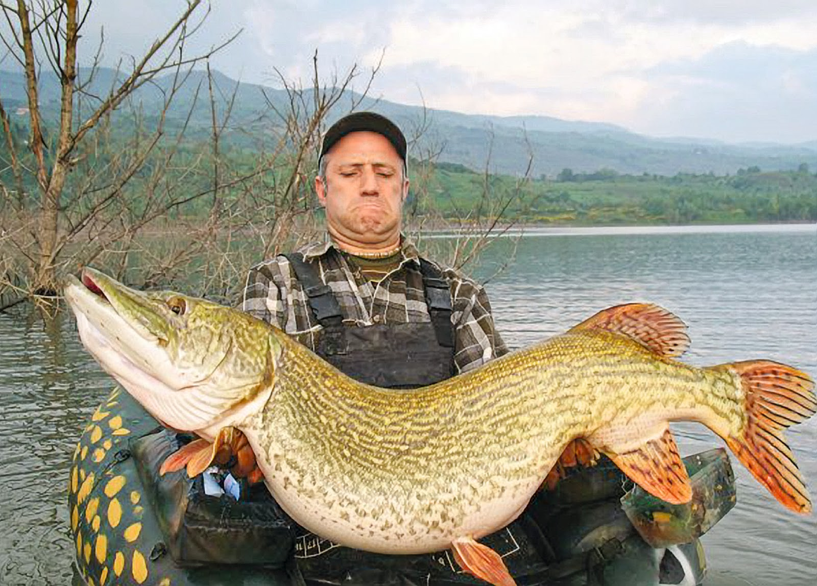 The all new angling times fishingmegastore blog for Pictures of pike fish
