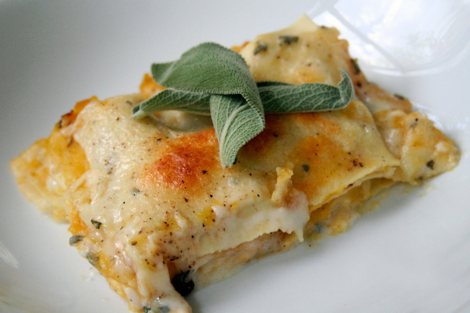 Oven Love: Roasted Butternut Squash Lasagna