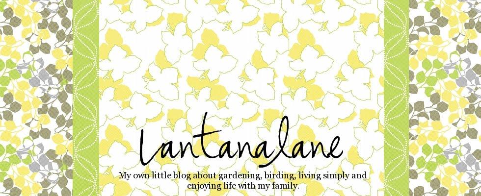 Lantanalane