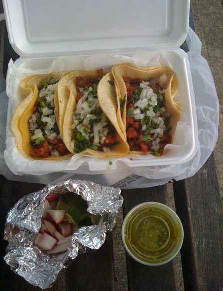 Tacos on a bench on Ocean Parkway Brooklyn