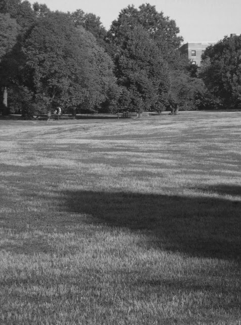 Black and white pic of Prospect Park Brooklyn