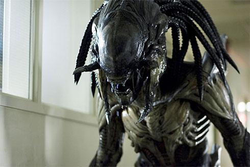 6 and 4 AVPR Aliens vs