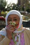 Lots of photographs of Northern Cyprus now on..
