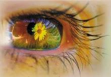 Een zonnebloem keert zich altijd naar het licht, en heeft van alle bloemen het zonnigste gezicht.