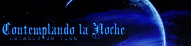 ::: Contemplando La Noche :::