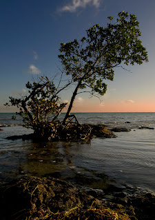 Click for a Larger Image of West Summerland Key Sunset