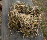 Click for Larger Image of Finished Nest