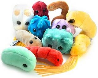 Medicina eficaz de vermes