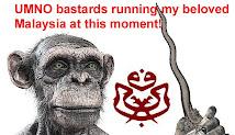 UMNO bastards of Malaysia